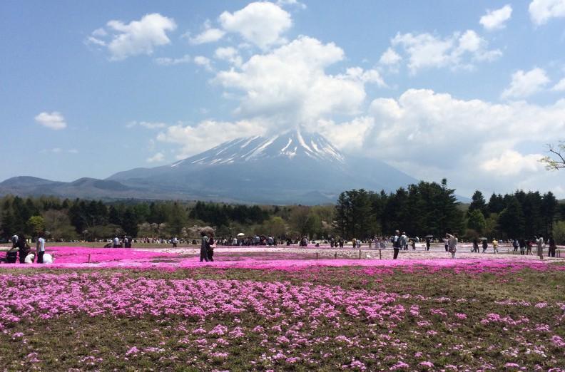■ ふるさと納税でもできる!熊本地震支援